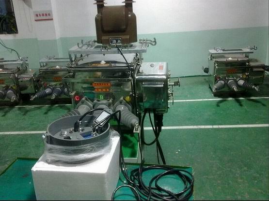 乐山天正电器有限公司    (三分群  王高胜)