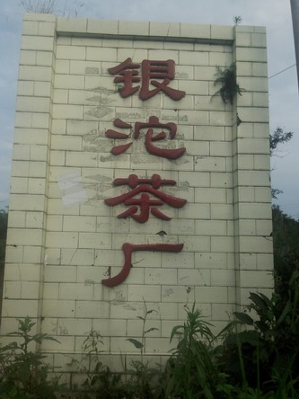五通银沱茶厂茶叶销售  (三分群  吴群)